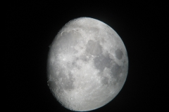 kerryn Murphy - AGM 07. 08 Occ Antares28